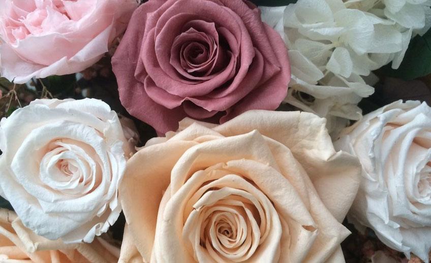 Что такое стабилизированные цветы и в чем их преимущества?