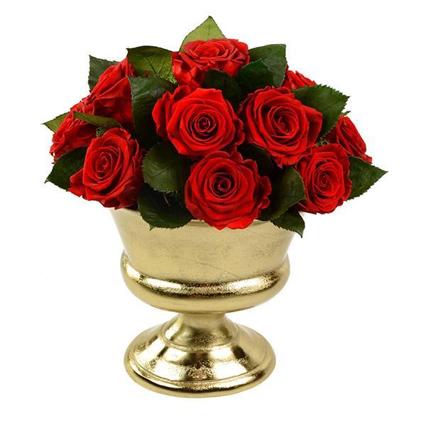 TLK-17 Композиция из 23 стабилизированных красных роз
